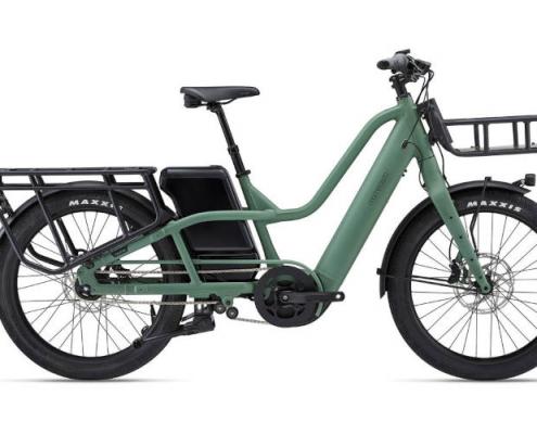 Momentum E-Bike